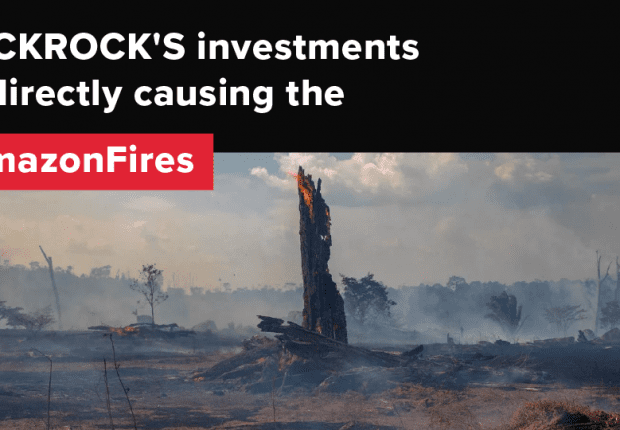 BlackRock's investments are directly causing the Amazon Fires