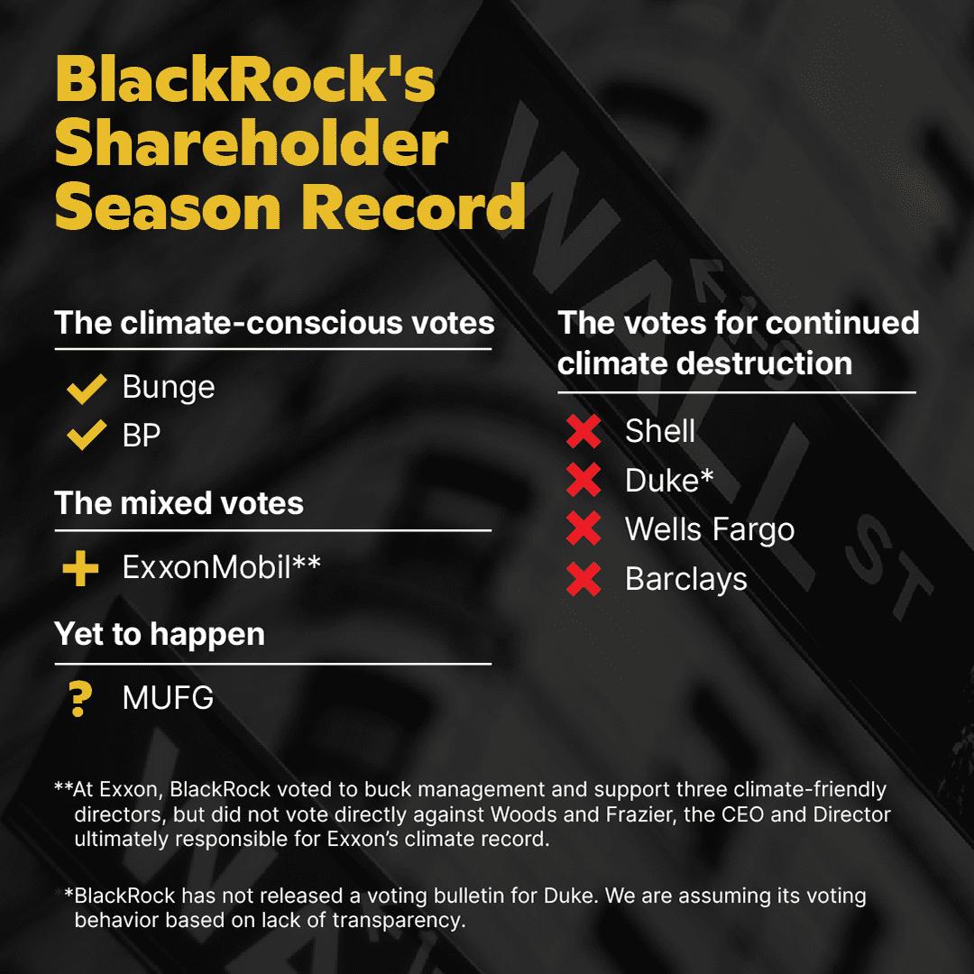 BlackRock's voting record shareholder season 2021